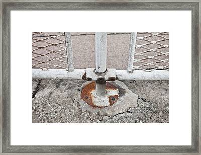 Metal Fence Framed Print by Tom Gowanlock
