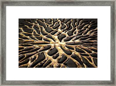 Molten Gold Seeping Out Of Rock Framed Print
