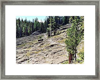 Framed Print featuring the photograph Mount Baldy Trail by Juls Adams