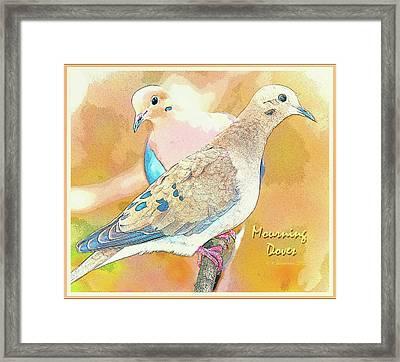 Mourning Dove Pair  Framed Print