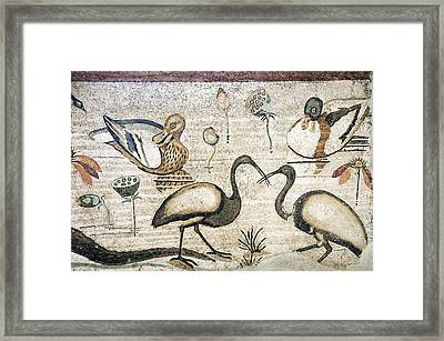 Nile Flora And Fauna, Roman Mosaic Framed Print by Sheila Terry