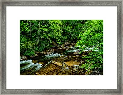North Fork Cherry River Framed Print by Thomas R Fletcher