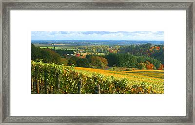 Oregon Wine Country Framed Print