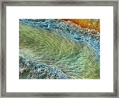 Ovarian Blood Vessel, Sem Framed Print by Steve Gschmeissner