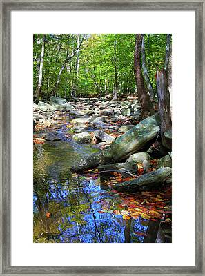 Framed Print featuring the photograph Peace by Mitch Cat