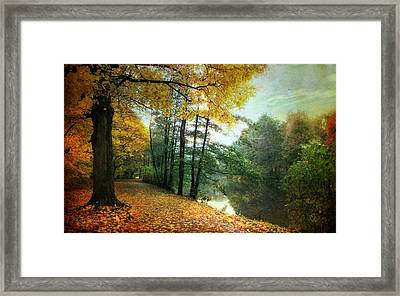 Peaceful Path Framed Print by Jessica Jenney