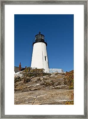 Pemaquid Point Light Framed Print by John Greim