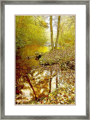 Pennsylvania Mountain Stream In Autumn Framed Print by A Gurmankin