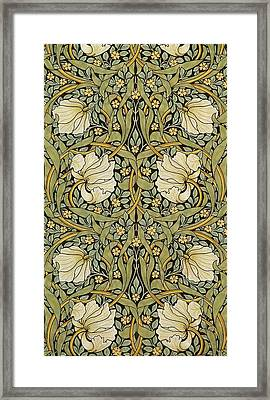 Pimpernel Framed Print by William Morris