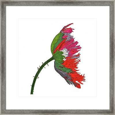 Pin Ink Water Color Framed Print by Jay Pumphrey Jr