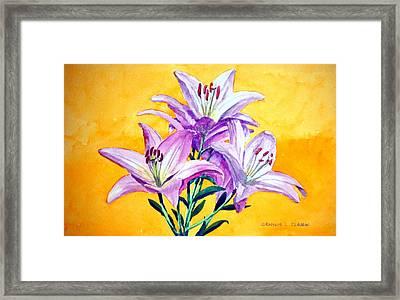 3 Pink Lilies Framed Print by Dennis Clark