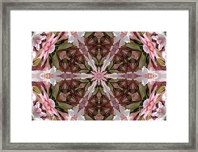 Pink Splash Kaleidoscope Framed Print