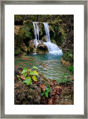 Price Falls In Autumn Color.  Framed Print