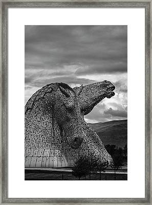Proud. Framed Print by Angela Aird