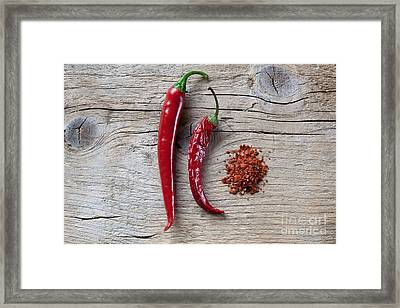 Red Chili Pepper Framed Print by Nailia Schwarz