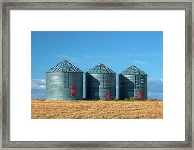 3 Red Doors Framed Print by Todd Klassy