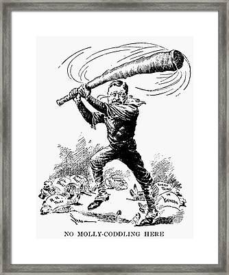 Roosevelt Cartoon, 1904 Framed Print