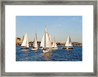 Sailboat Race Framed Print by Tom Dowd
