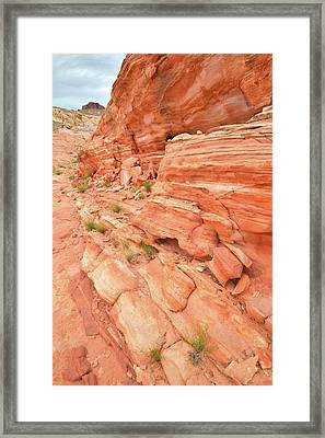 Framed Print featuring the photograph Sandstone Wall In Valley Of Fire by Ray Mathis