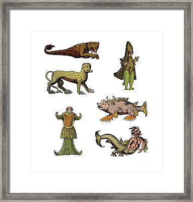 Sea Monsters Framed Print by Science Source