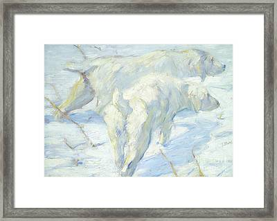 Siberian Dogs In The Snow Framed Print