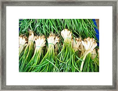Spring Onions Framed Print by Tom Gowanlock