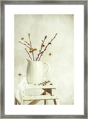 Springtime Still Life Framed Print by Amanda Elwell