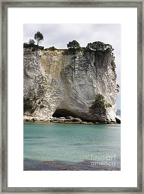 Stingray Cove Framed Print by Himani - Printscapes