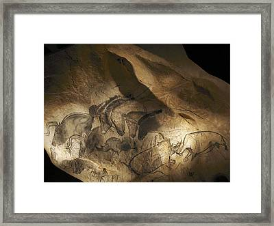 Stone-age Cave Paintings, Chauvet, France Framed Print by Javier Truebamsf