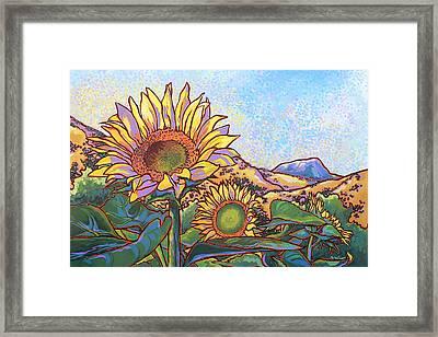 3 Sunflowers Framed Print by Nadi Spencer