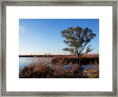 Sunrise In The Ditch Burlamacca Framed Print