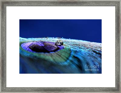 True Framed Print