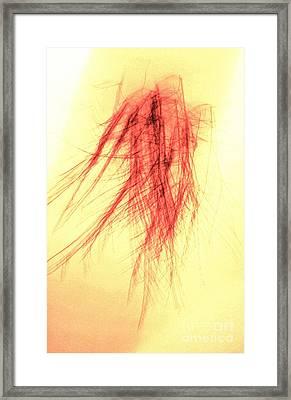 Untitled Framed Print by Xn Tyler