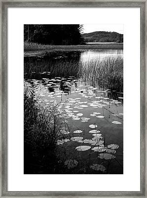 View At Lake Saimaa Framed Print