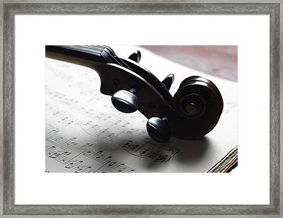 Violin Framed Print by Nichola Evans