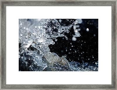 Water Drops Framed Print by JT Lewis