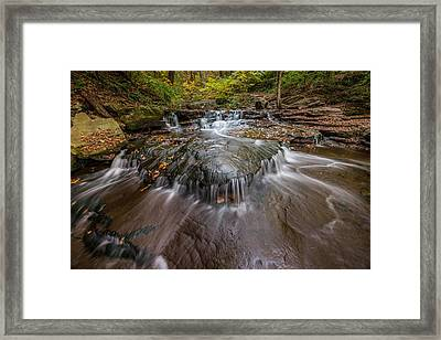 Ricketts Glen State Park Pennsylvania Cascades Framed Print