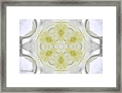 White Arctic Queen Kaleidoscope Framed Print