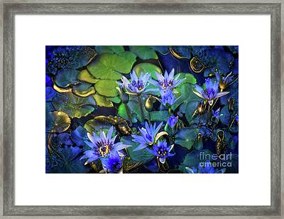 Jeweled Water Lilies Framed Print