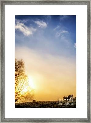 Framed Print featuring the photograph Misty Mountain Sunrise by Thomas R Fletcher