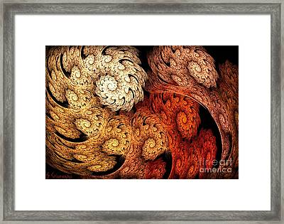 32-rolled Up Framed Print by Silvia Giussani