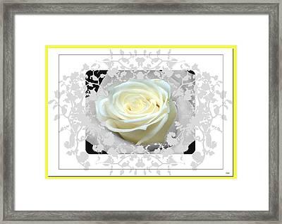 Wedding Rose Collection  Framed Print