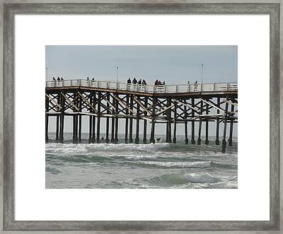 3253 Framed Print by John Wilson