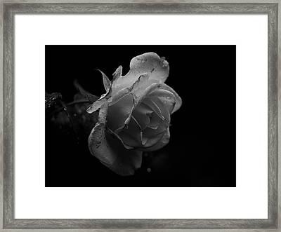 33 Framed Print