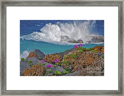 34- Beauty And Power Framed Print by Joseph Keane