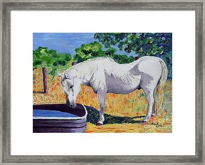 34 Year Old Elfid Framed Print by Lisa Rose Musselwhite