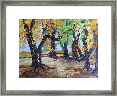 #35 Cottonwood Colors Framed Print