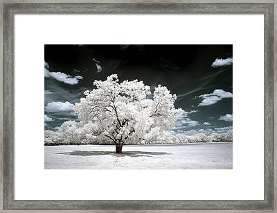 Framed Print featuring the photograph 39 by Mike Irwin