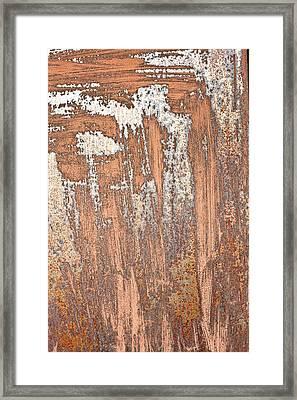 Rusty Metal Framed Print by Tom Gowanlock