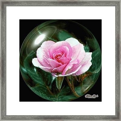 3d Pink Rose Sphere Framed Print